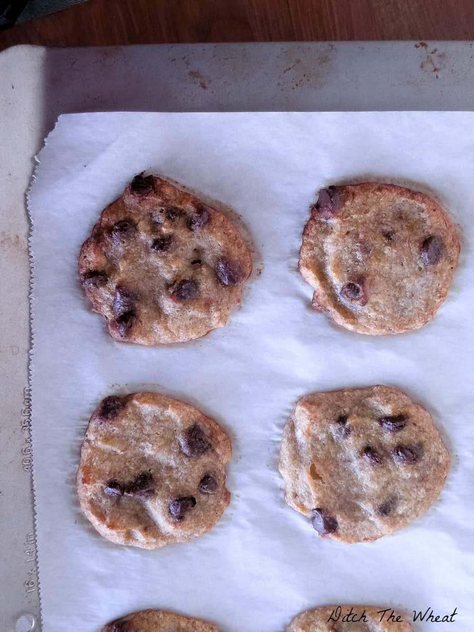 Coconut Flour Chocolate Chip Banana Cookies | Ditch The Wheat