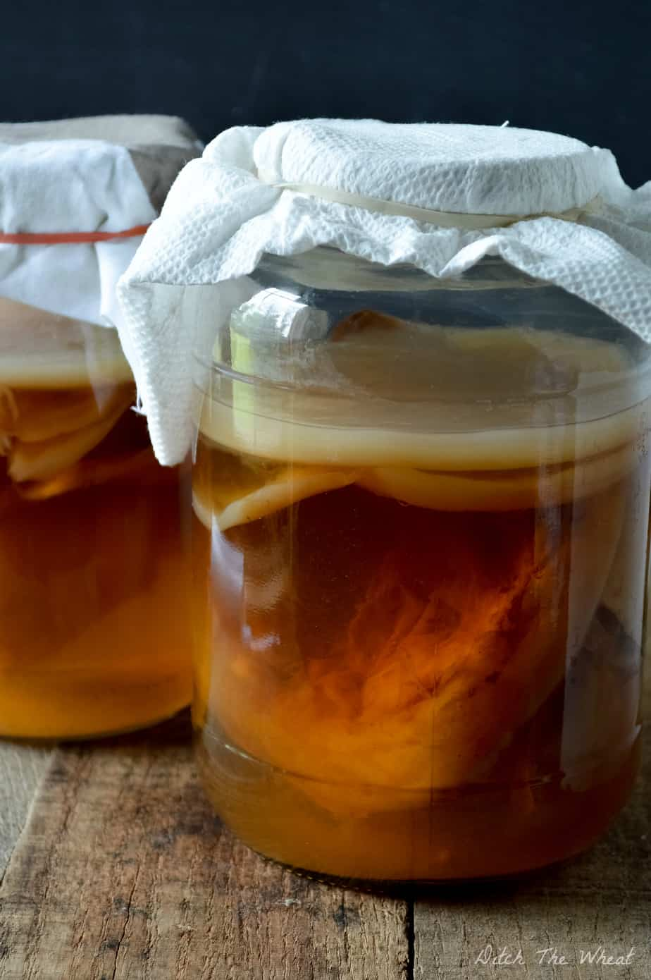 How to Grow a Kombucha Scoby from Bottled Kombucha