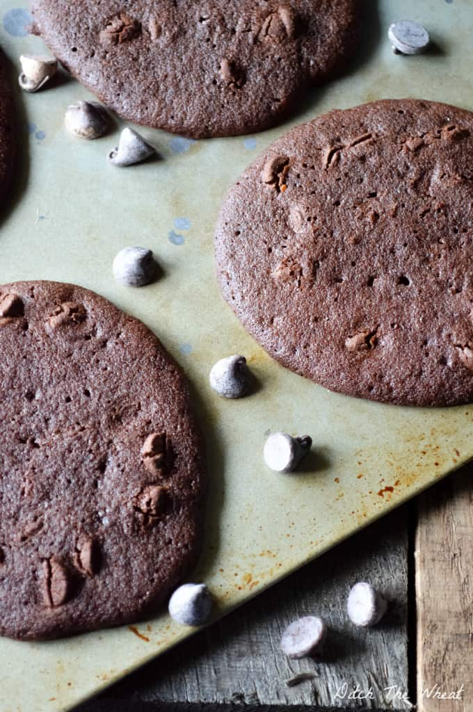 THE BEST Double Chocolate Chip Coconut Flour Cookies [1/3 cup extra virgin coconut oil or butter, 2/3 cup coconut palm sugar, 2 large eggs, 1 tsp vanilla extract, 3 tbsp coconut flour, sifted, ¼ cup unsweetened cocoa powder, ¼ tsp baking soda, 1/8 tsp salt, ½ cup dark chocolate chips] coconut flour cookies, chocolate coconut flour cookies, paleo coconut flour cookies, gluten-free coconut flour cookies, coconut flour cookies recipe, coconut flour chocolate cookies