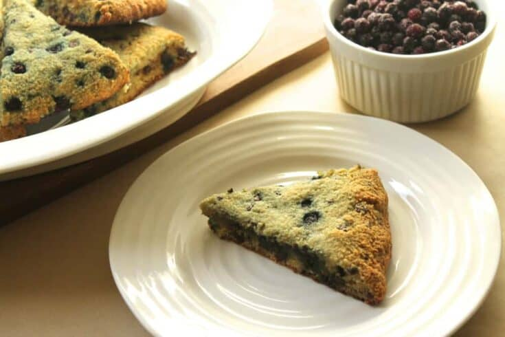 Grain-Free Wild Blueberry & Chocolate Chip Scones